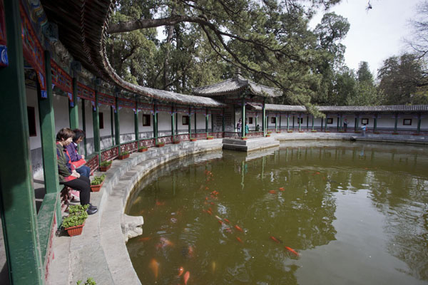 Photo de Covered walkway around a pond in Jianxin Garden in Fragrant Hill park - Chine - Asie