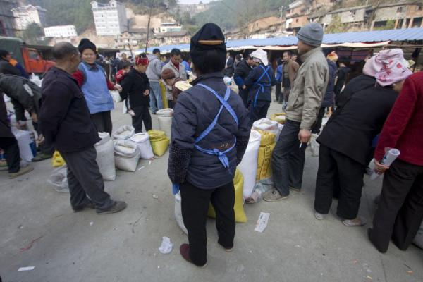 Picture of Gedong market (China): Rice market in Gedong
