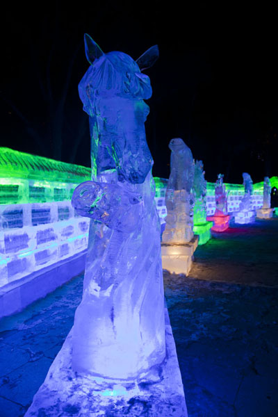 Row of ice sculptures in the park | Ice Lantern Art Show | China