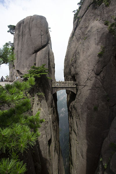Foto di Buxian, or Fairy Walking, Bridge spectacularly links two steep cliffsHuangshan - Cina