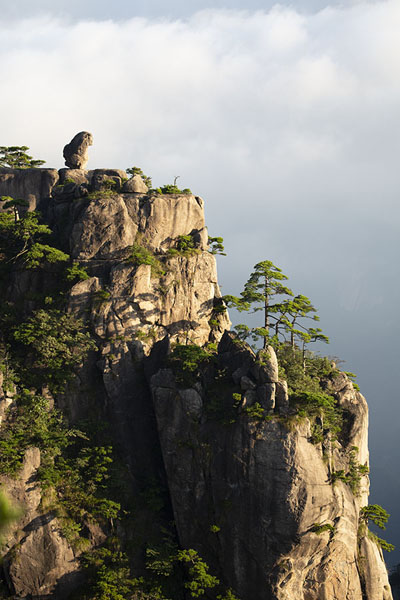 Foto van Stone Monkey watching the Sea of Clouds in the early morning - China - Azië