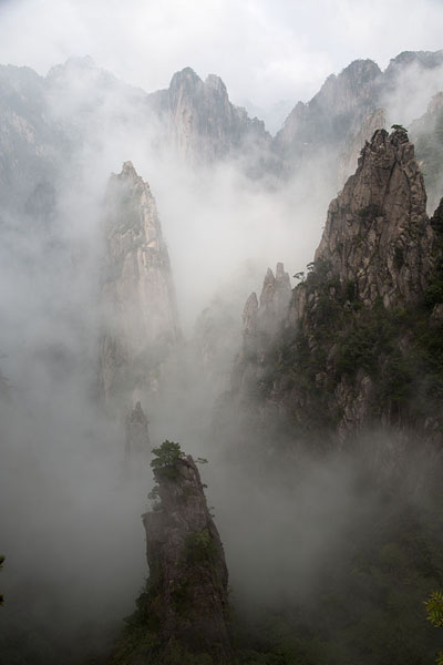 Foto de Clouds enveloping granite peaks in the Yellow MountainsHuangshan - China