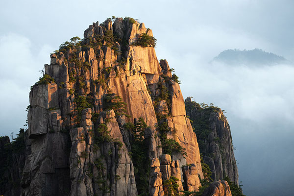 Foto di Early sunshine on a rock formation above the sea of cloudsHuangshan - Cina