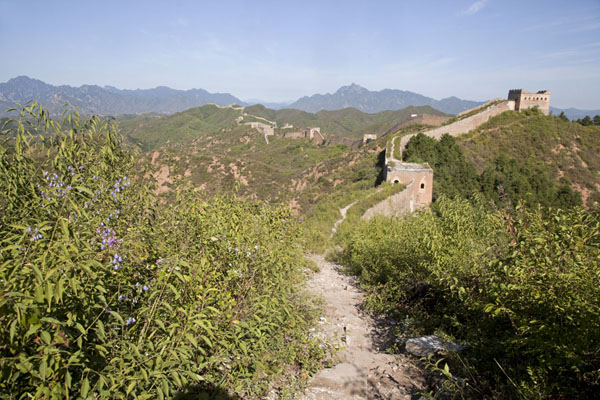 Picture of Jinshanling Great Wall (China): The western section of the Great Wall of Jinshanling has trails and flowers on top