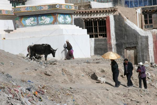 Picture of Dondrubling monastery (China): Jyekundo monastery: people walking the kora