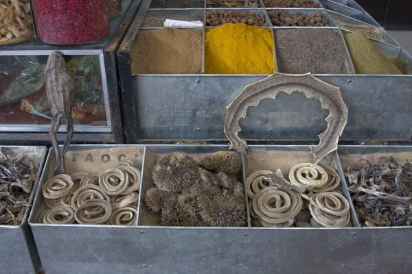 Spices and dried animals for sale at Kashgar bazaar | Bazar di Kashgar | Cina