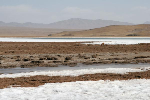 Landscape with ice at the shore of Ngoring Tso | Ngoring Lake | China