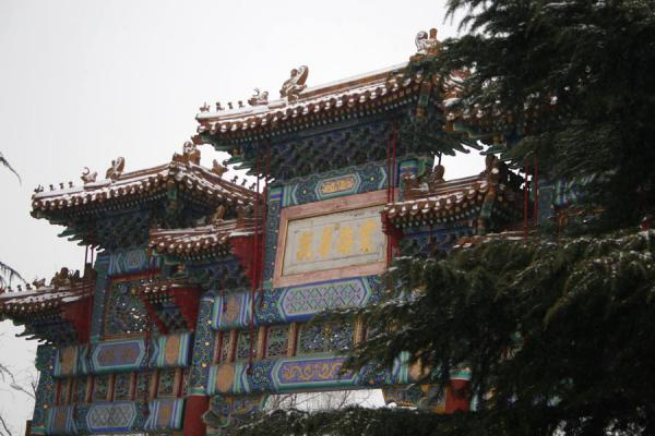 Entrance to complex hidden by trees | Lama Temple | China