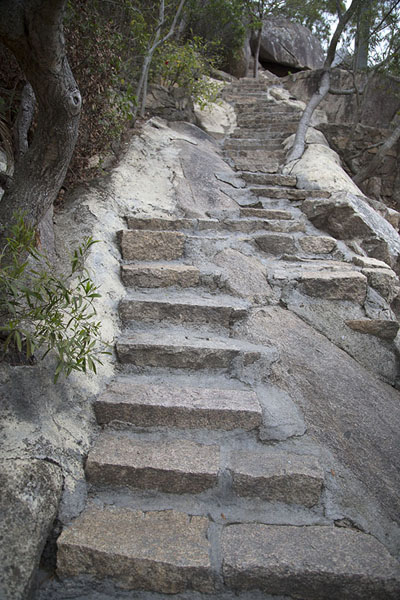 Foto van Steps leading up Wulaofeng mountain behind the Nanputuo temple complexXiamen - China