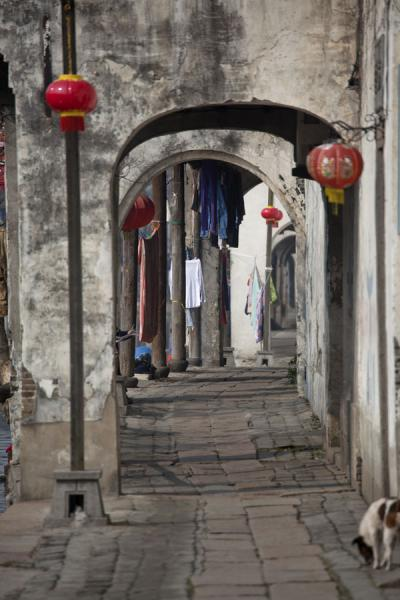 Picture of Arched alley running under the Baijianlou houses in Nanxun