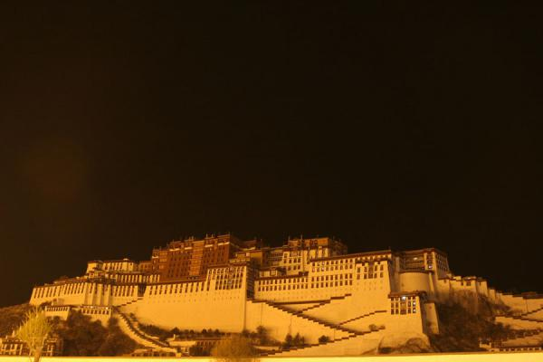 Picture of Night view of Potala palace