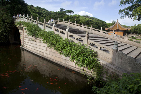 Foto van Bridge over the pond near Puji templePutuoshan - China