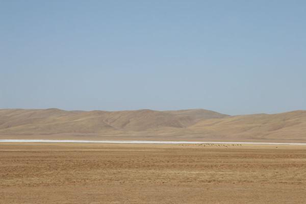 Frozen river in a barren landscape in the vicinity of Maduo | Qinghai landschap | China