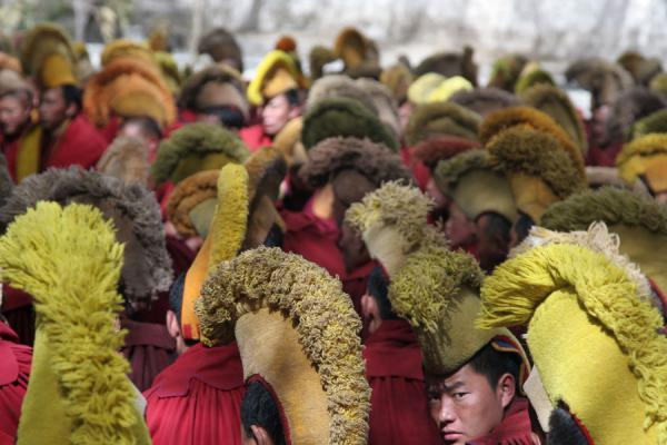 Yellow hat sect monks in service at Sera monastery | Sera monastery | China