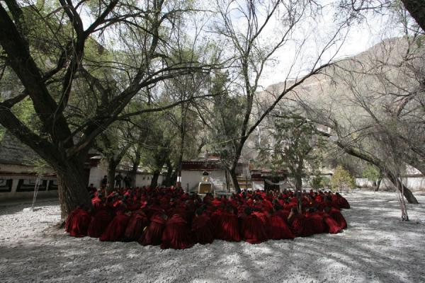 Monks assembling for service in the debate courtyard of Sera monastery | Sera monastery | China