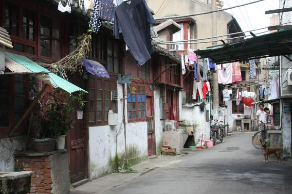 One of the many alleys | Shanghai | China