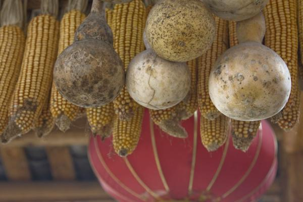 Picture of Calebas, corn, and Chinese lantern hanging from a house in Shi Long Zhai
