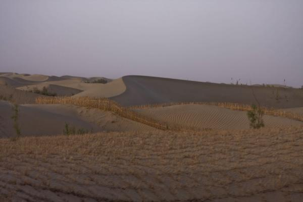 Picture of Taklamakan Desert Highway (China): Elegant curves of the sand dunes in the Taklamakan Desert