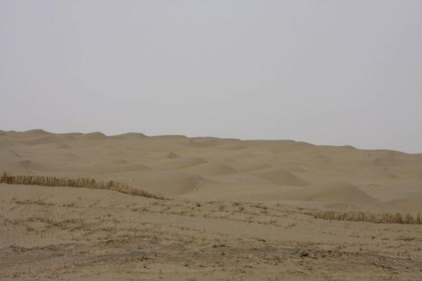 Ocean of sand dunes and protective mats in the Taklamakan Desert | Taklamakan Desert Highway | China