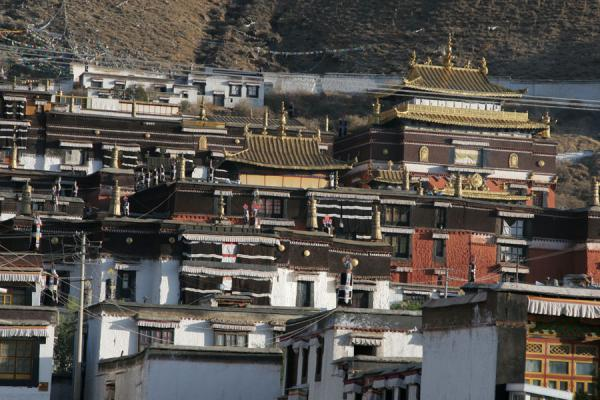 Photo de Tashilhunpo monastery basking in the early morning sunlightShigatse - Chine