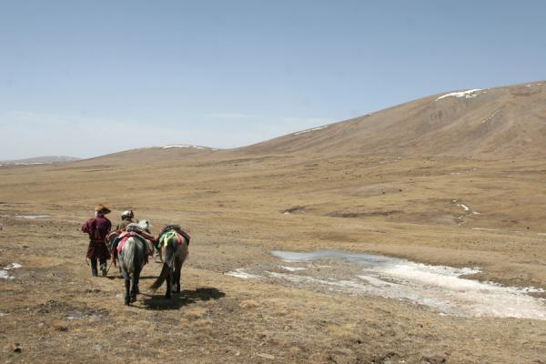 Tibetan nomad horsemen walking into the emptiness of Qinghai | Tibetaanse nomaden | China