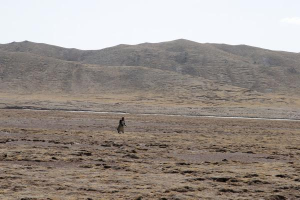 Lone Tibetan pilgrim in the barren landscape of Qinghai | Tibetan pilgrims | China