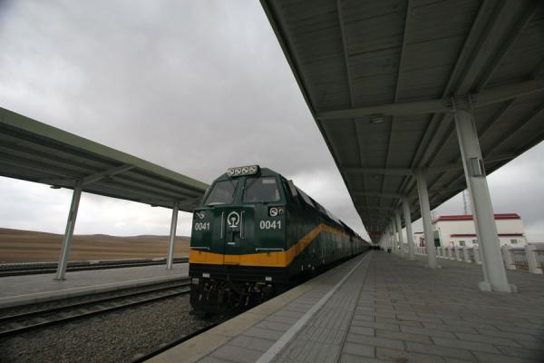 Picture of Train to Lhasa (China): Train to Lhasa: locomotive on one of the few stations