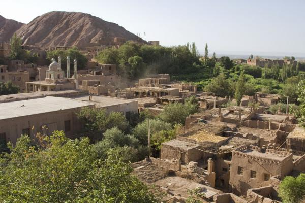 Picture of The village of Tuyoq: adobe houses and green trees