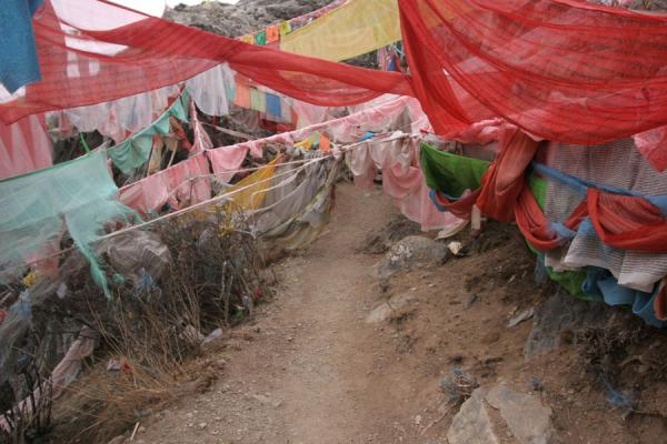 Path disappearing under a load of prayer flags | Wencheng temple | China