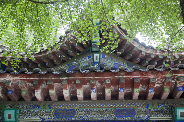 Picture of Detailed view of upper part of a small building with leaves in the northern part of Wenshu monastery grounds
