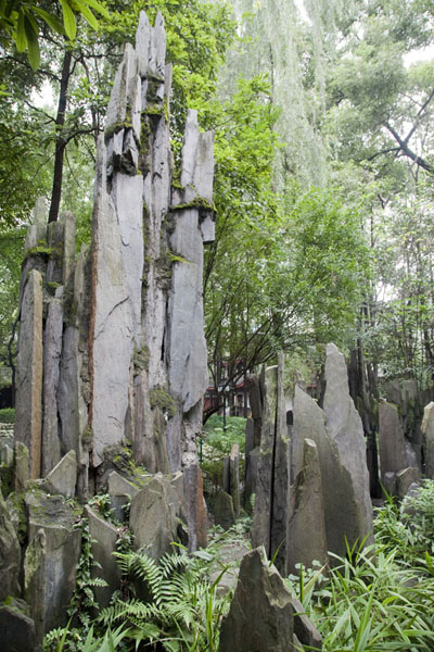 Foto de Sculpted rocks in the park of Wenshu monasteryChengdu - China