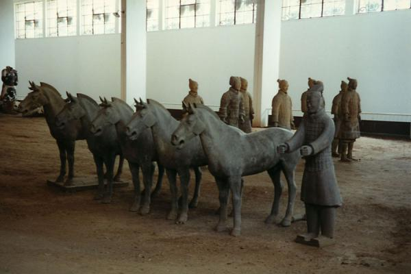A few of the terracotta horses | Xian Terracotta Warriors | China
