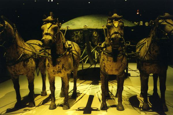 Picture of Xian Terracotta Warriors (China): Terracotta horses on display in museum