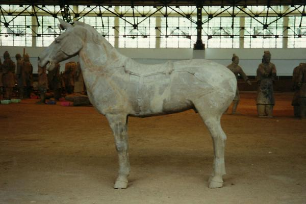 Picture of Xian Terracotta Warriors (China): Terracotta horse with warriors
