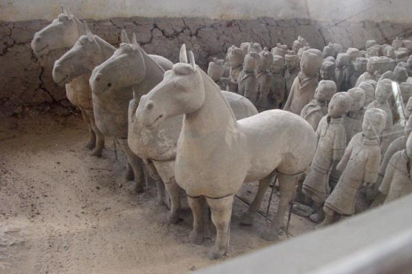Picture of Xuzhou Terracotta Warriors (China): Xuzhou warriors and horses