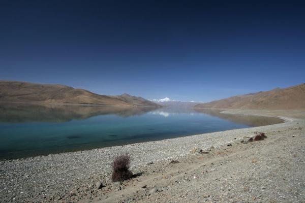 Picture of Yamdrok Lake (China): Yamdrok Lake: beach