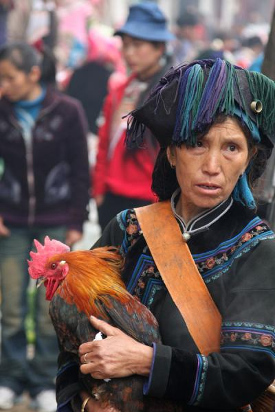 Picture of Yuanyang market people (China): Ethnic Hani woman with her cock on market day