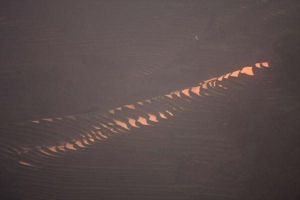 Foto van Last sunlight falling on the rice terraces at the Tiger MouthYuanyang - China