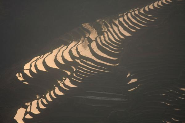 Picture of Tiger Mouth rice terraces under the light of sunset