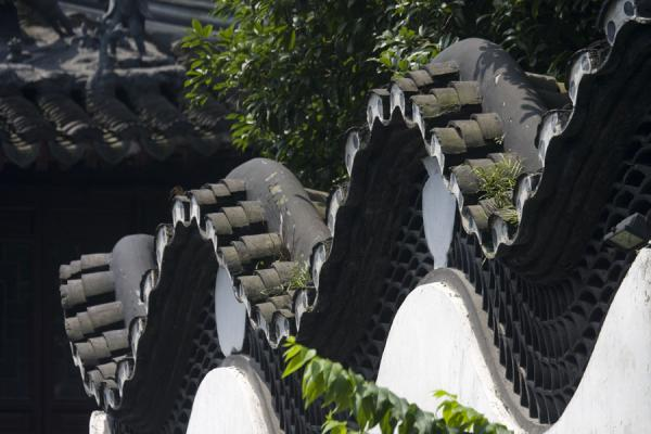 Picture of Yuyuan Garden (China): Undulating dragon wall in the eastern part of Yuyuan Garden