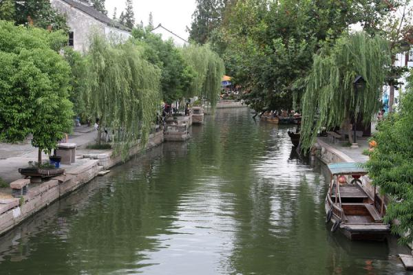 Canal with overhanging trees in Zhujiajiao | Zhujiajiao Canal Town | China