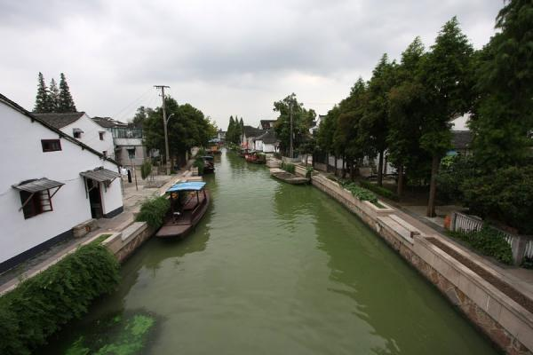 Picture of Tree-lined canal on the northern end of Zhujiajiao