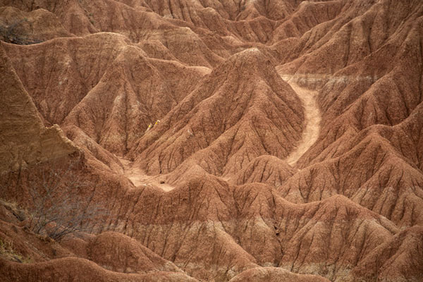 Close-up of the Cusco area of the Tatacoa Desert, which is largely brown-red | Désert de Tatacoa | Colombie