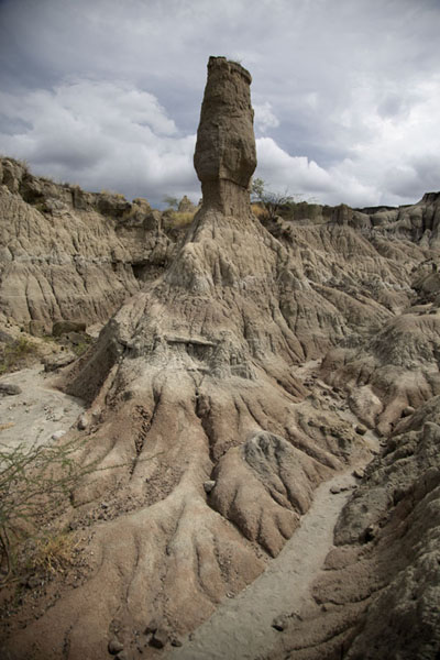 Foto van One of the towers sculpted by wind and rain in the Los Hoyos area in the Tatacoa DesertTatacoa - Colombia