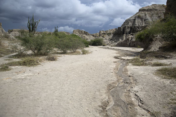 Picture of Canyon in the Los Hoyos area with grey formations of the desertTatacoa - Colombia