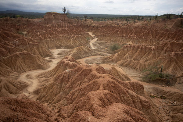 Canyons cutting through the desert landscape of Tatacoa - 哥伦比亚