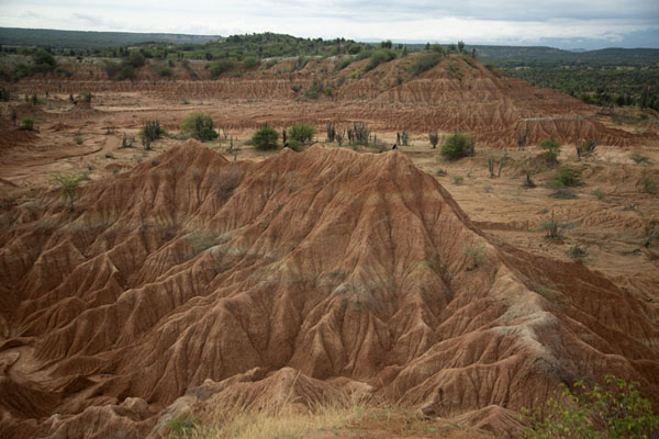 View over the Tatacoa Desert from one of the viewpoints | Tatacoa woestijn | Colombia