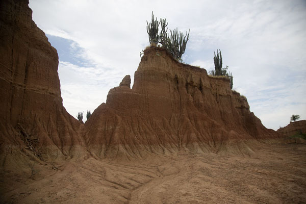 Big formation in the desert with cacti on top | Desierto de la Tatacoa | Colombia