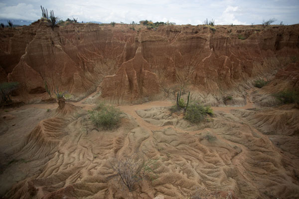 Foto van The colours and lines of the desert combine with the green cacti to create artistic landscapesTatacoa - Colombia