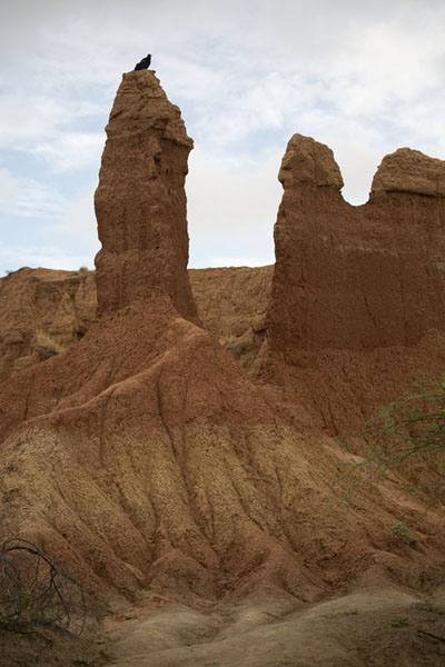 Pillars of earth sculpted by erosion | Desierto de la Tatacoa | Colombia